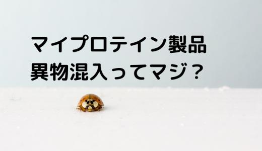 マイプロテイン製品に虫が混入!?コンタミ?【公式からお詫び】